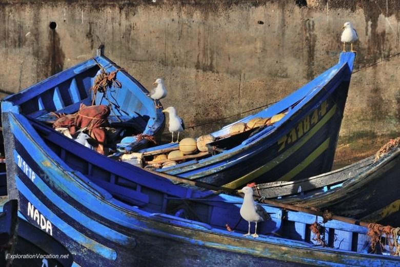 Morocco 12 DSC_8199 blue boats in Essaouira's harbor