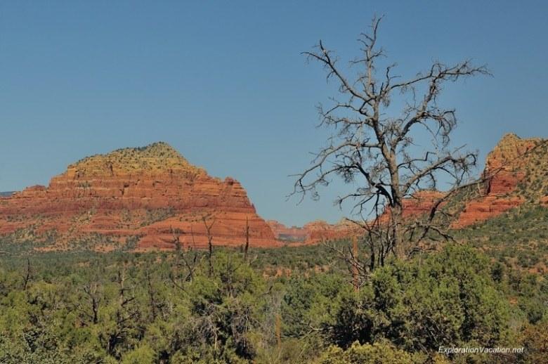 Sedona DSC_4214 Arizona