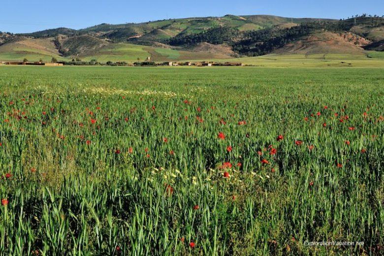 DSC_6288 rural landscape east of Marrakech 10