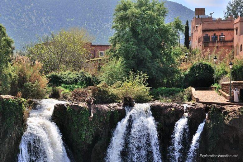 Cascades d'Ouzoud Morocco DSC_6406