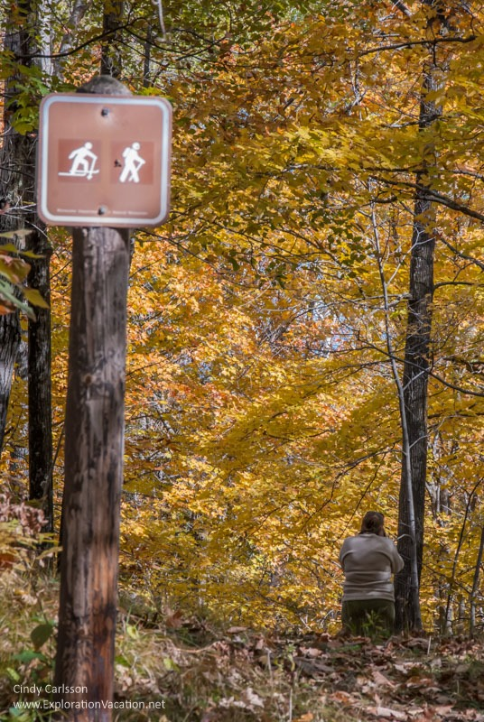 hiking trail Fall in Kathio Mille Lacs State Park