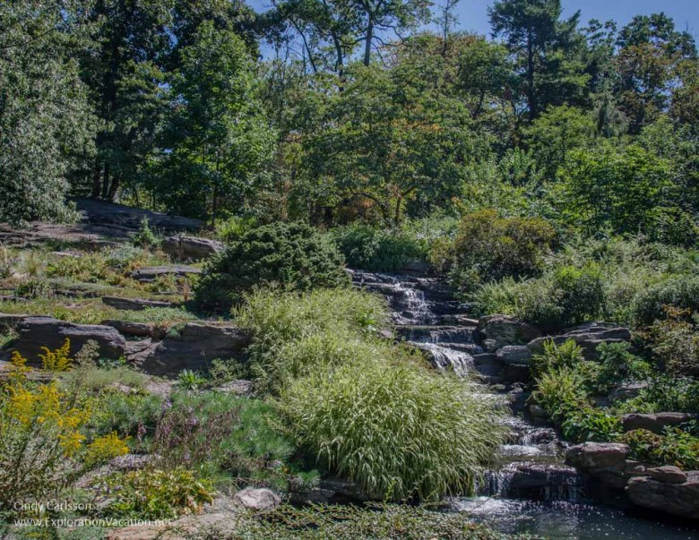 rock garden New York Botanical Garden NYC