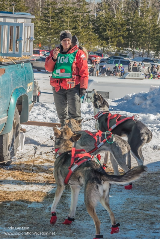 dogs and musher