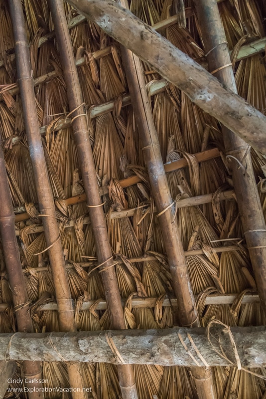 inside of thatch roof