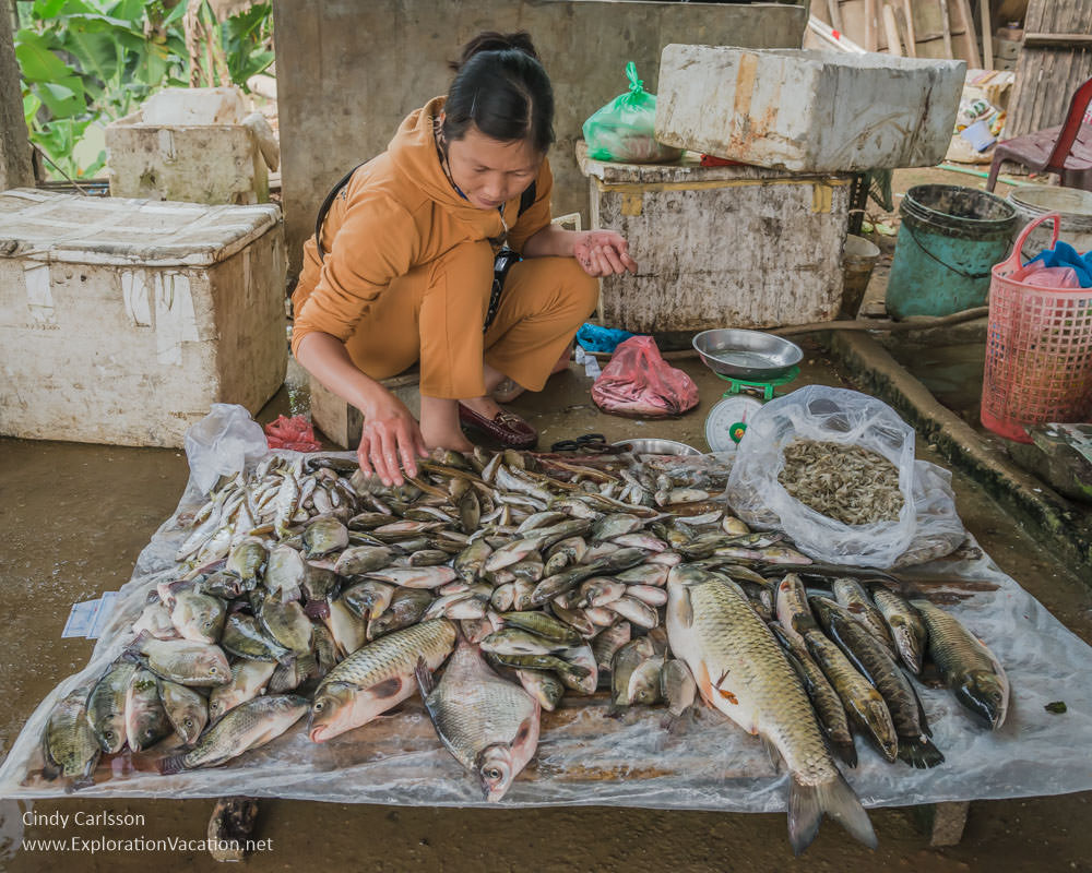 Visiting a typical market in northern vietnam for Fresh fish market near me