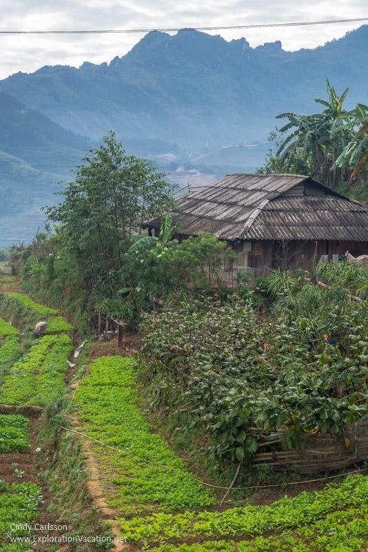 Black Hmong village Vietnam road trip Sapa - ExplorationVacation
