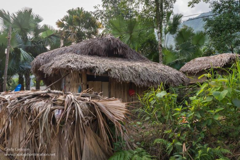 palm village Northern Vietnam road trip - ExplorationVacation