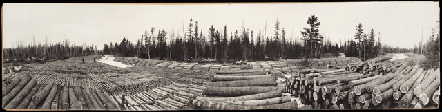 Logs on the Big Fork river - MNHS photo