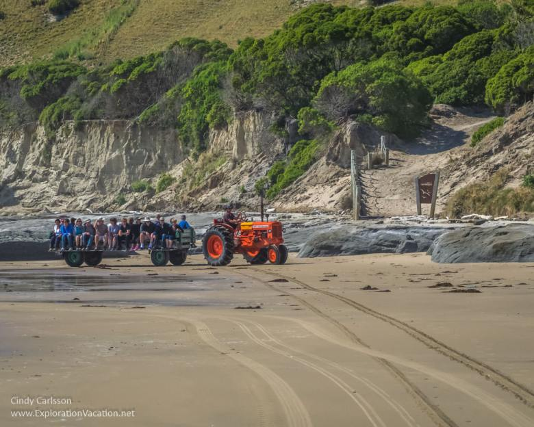 Cape Kidnappers tractor tours Hawkes Bay New Zealand - www.explorationvacation.net