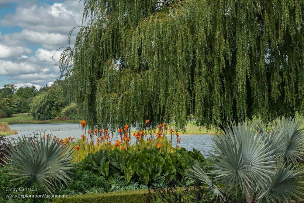 Beauty Abounds At The Chicago Botanic Garden