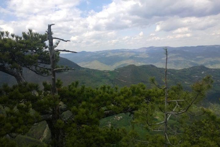vidikovac Crnjeskovo, Tara