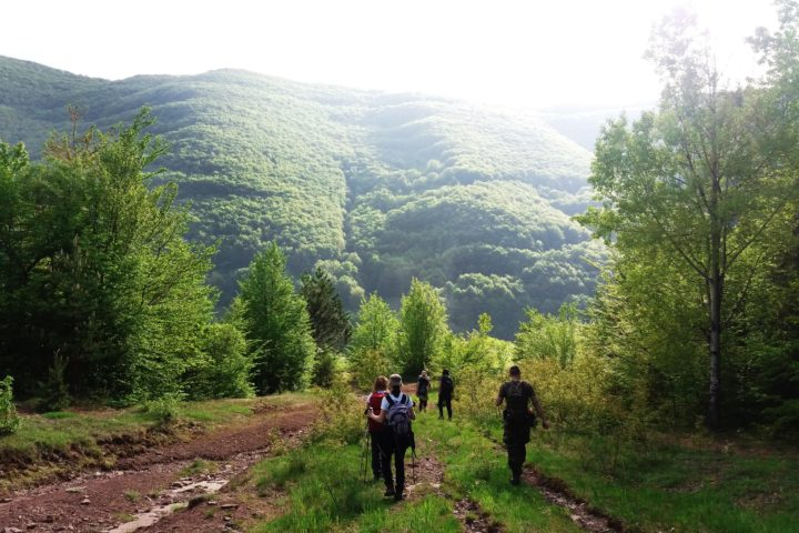 Hiking Stara planina