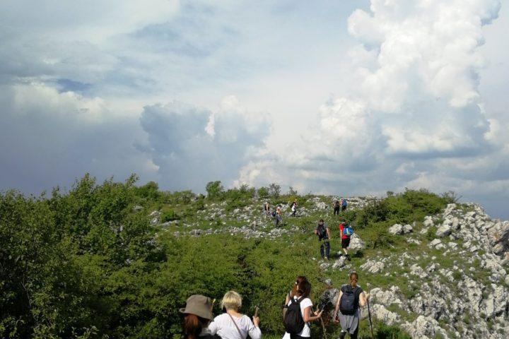 hiking na Homoljskim planinama