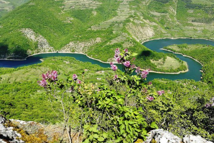 Zavojsko jezero, Stara planina
