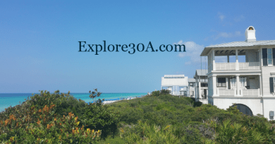 Seaside Florida Homes for Sale