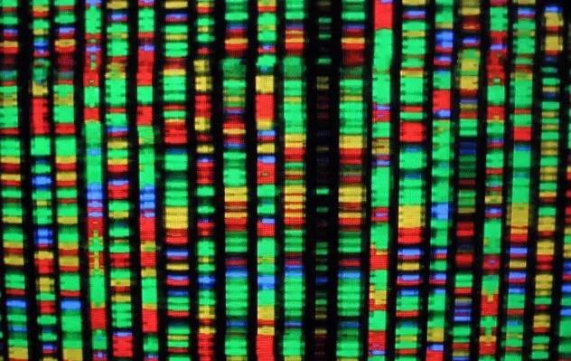 human-genome-e1375495102242