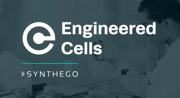 Synthego - CRISPR Startup