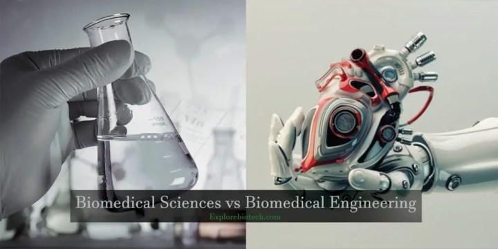 Biomedical Sciences vs Biomedical Engineering