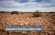 Brown-Biotechnology