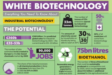 Everything You Need To Know About White Biotechnology