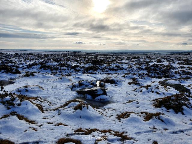 Craddock Moor Stone Circle