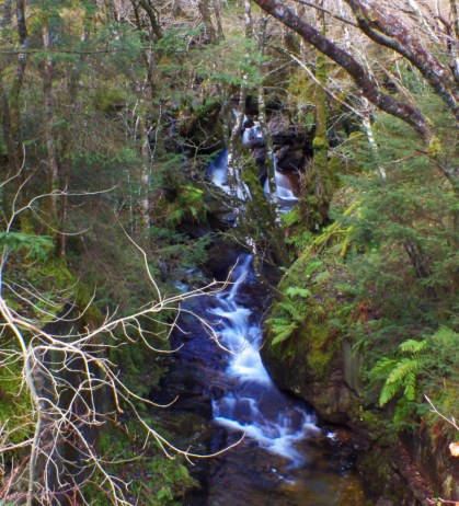 One of the roadside waterfalls