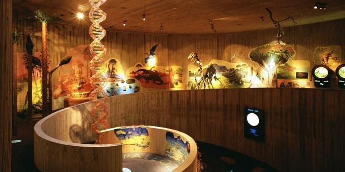 Izlet za djecu – ljeto u Muzeju Krapinskih Neandertalaca