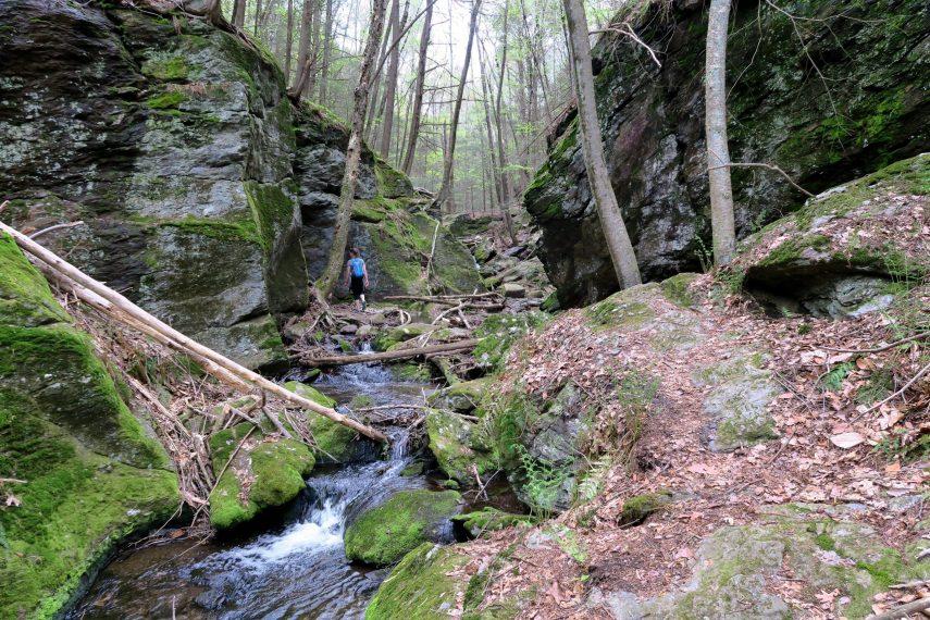 Bailey's Ravine Trail