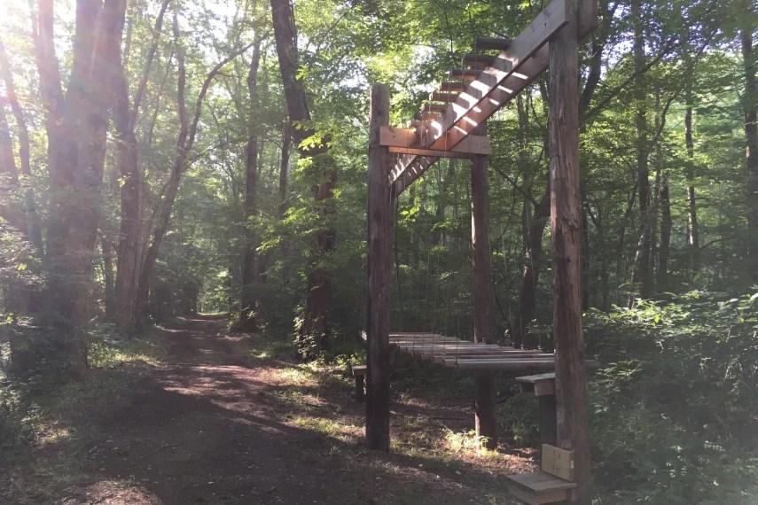 Giddings Park Swinging Steps