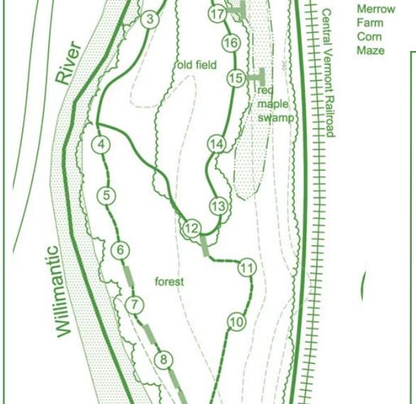 Merrow Meadow Trail Map