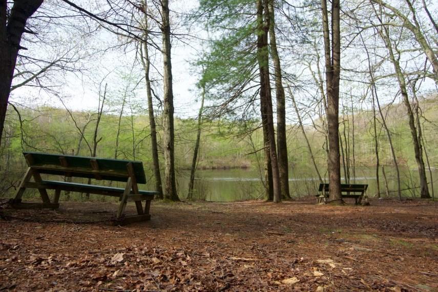 Pine Grove Seating