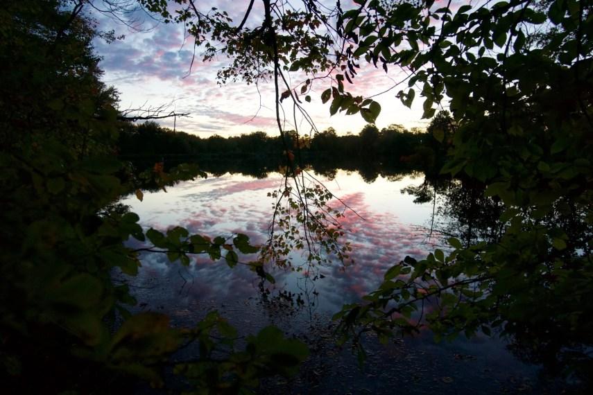 Risley Pond Sunset