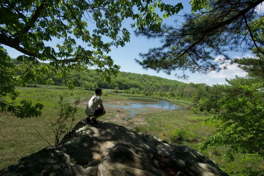 Selden Creek White Overlook