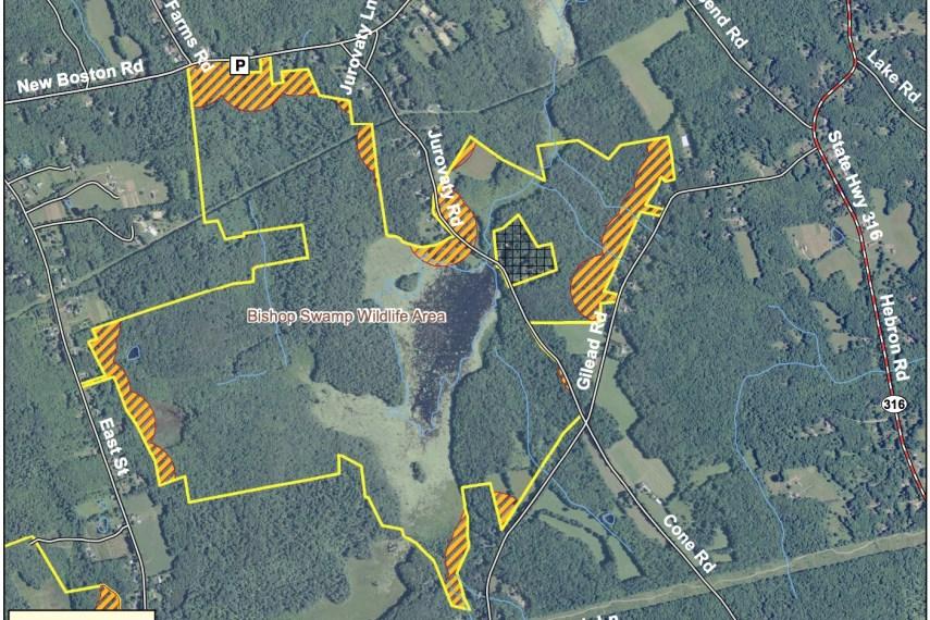 Bishop Swamp Map