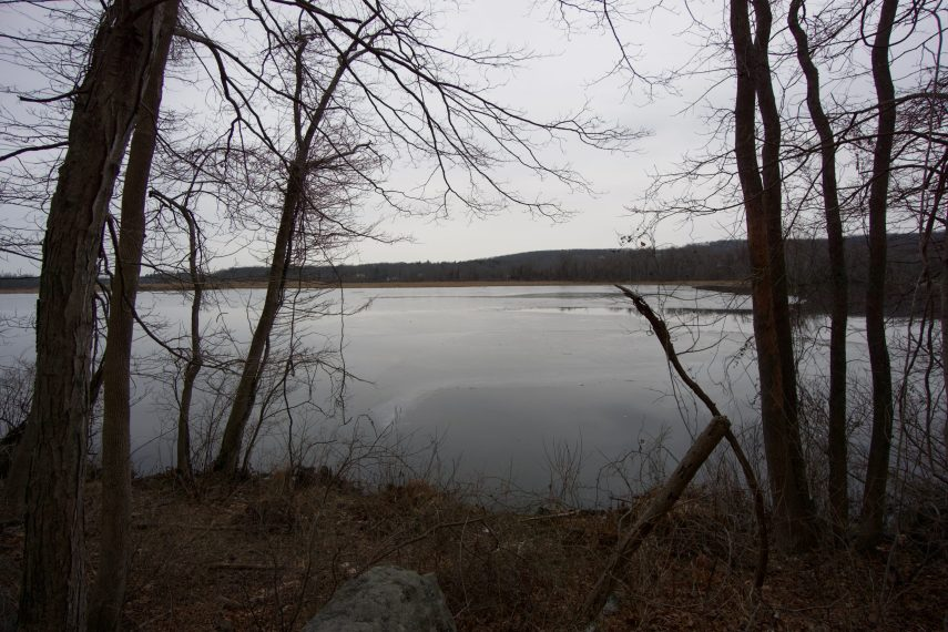 Chapman Pond