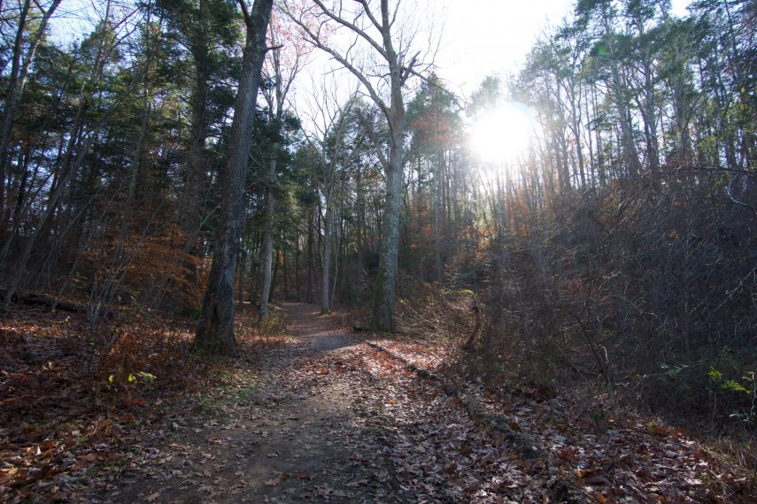 Machimoodus Lower Vista Trail