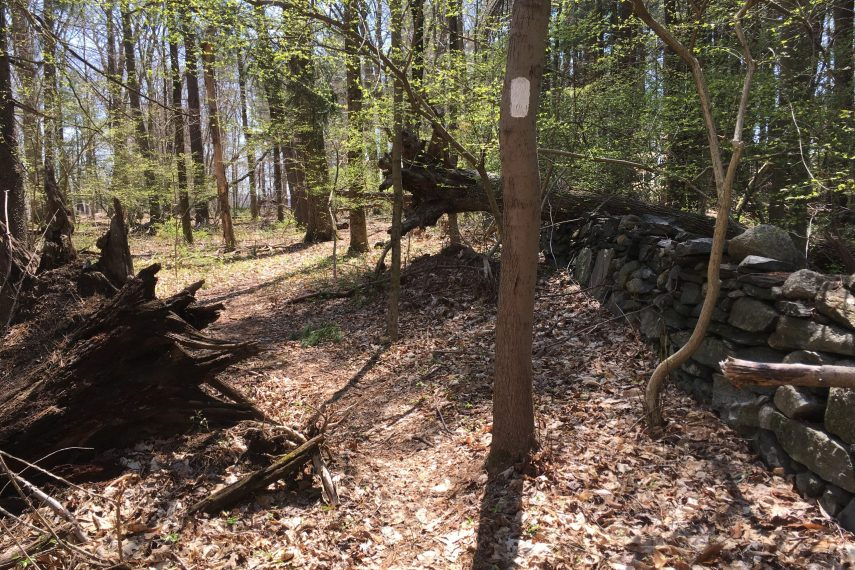 Union Hill Trail