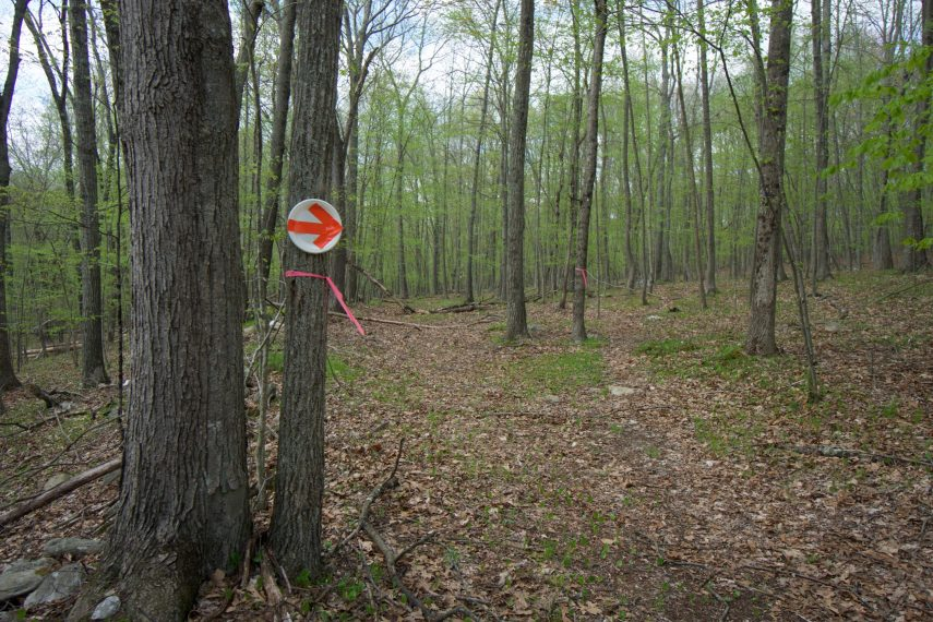 Trailmarkers at Thorton Brook