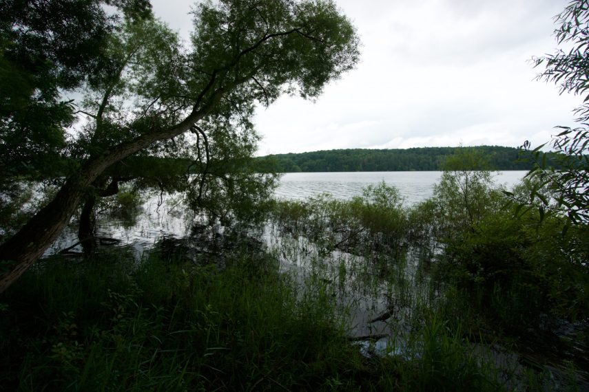 View of Shenipsit Lake