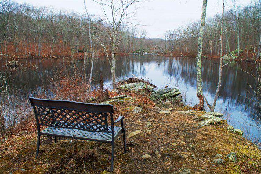 Mill Pond at Hartman Park