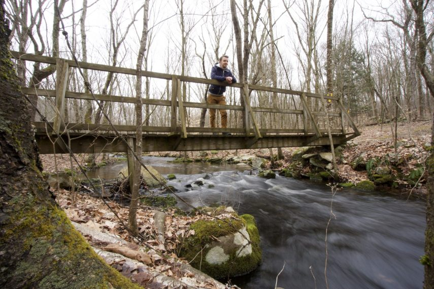 Friedman Forest Bridge