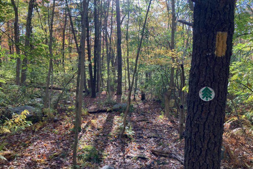 Herrick Park Trail