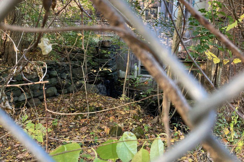 Mill Brook Park Falls