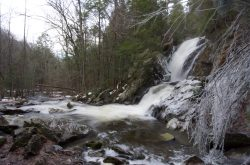 Campbell Falls State Park