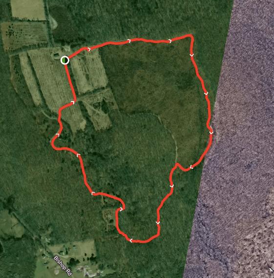 Bear Hill WMA Trail Map