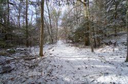 Boston Turnpike Trail
