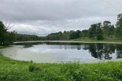 Zemko Pond WMA