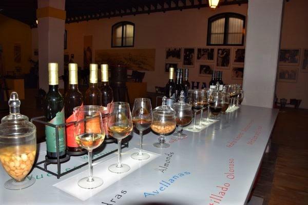Tipos de jerez types of sherry fino amontillado oloroso medium cream bristol px VORS very old rare sherry tasting vino jerez sherry Jerez de la frontera solera village Cadiz Explore la Tierra