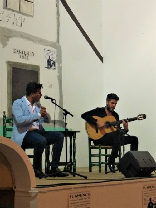 Flamenco Vejer de la Frontera day tour Cadiz
