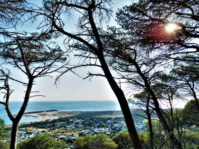 Hiking trail tour in Cadiz province La Breña Natural Park Palomar View point Torre de Meca Cape Trafalgar
